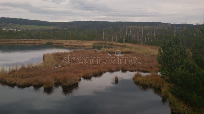 Lago della palude di torba (parco nazionale ceco) fotografia stock libera da diritti