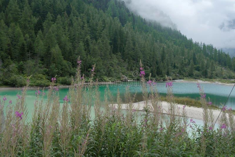 Lago delle命运 免版税图库摄影