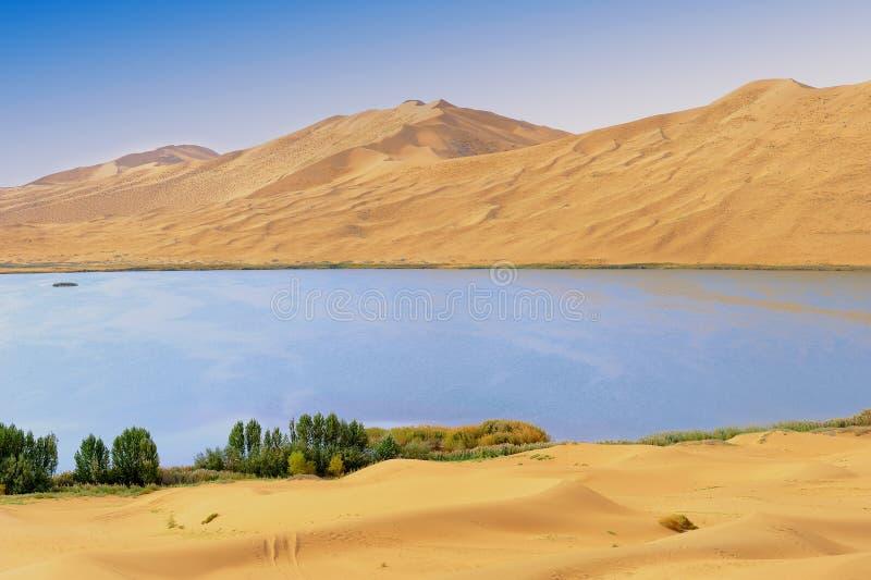 Lago desert fotografie stock