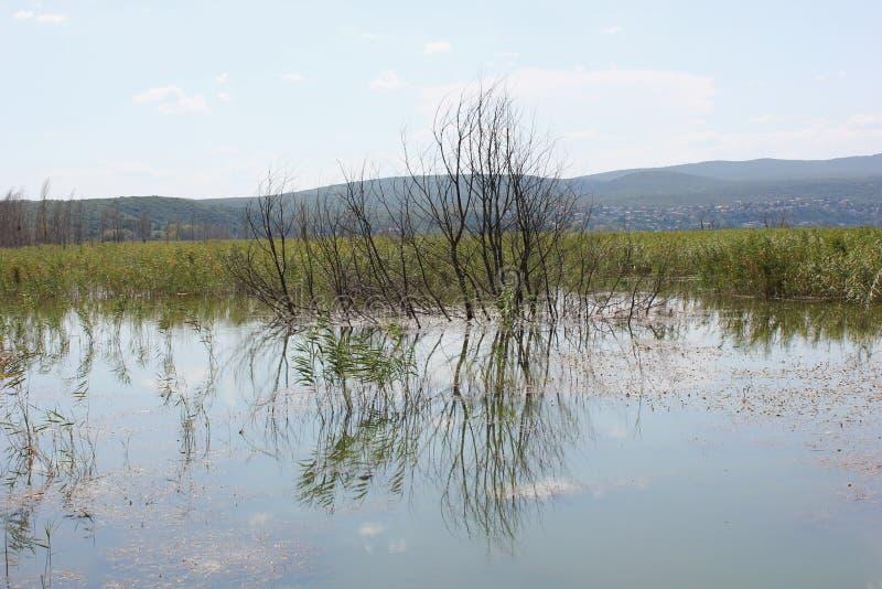 Lago di Doirani Kilkis Grecia fotografia stock