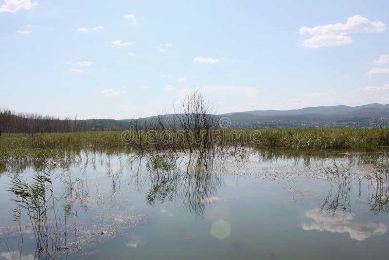 Lago di Doirani Kilkis Grecia immagini stock