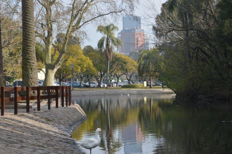 Lago di Palermo fotografia stock libera da diritti