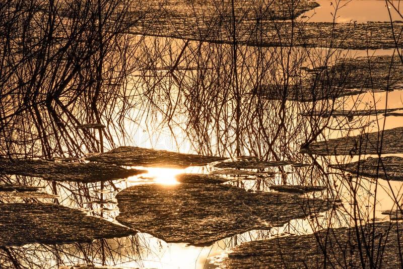 Lago di riflessioni dell'acqua della deriva del ghiaccio immagini stock libere da diritti