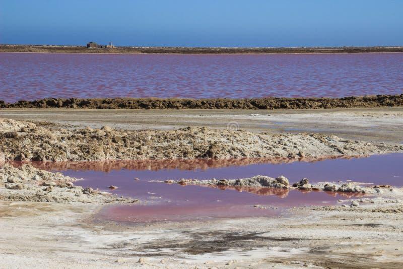 Lago di sale rosa insolito in Namibia con una fabbrica del sale fotografia stock libera da diritti