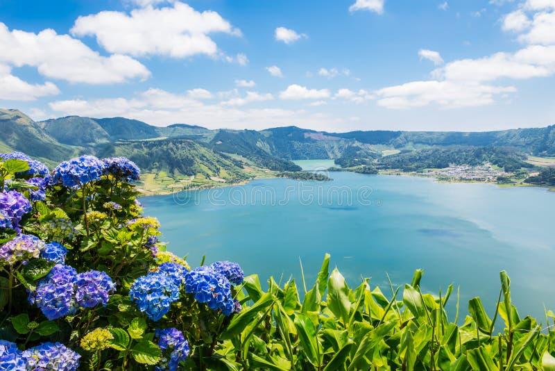 Lago di Sete Cidades con hortensia, Azzorre fotografia stock libera da diritti