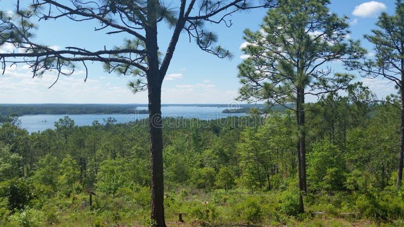 Lago distante fotos de stock