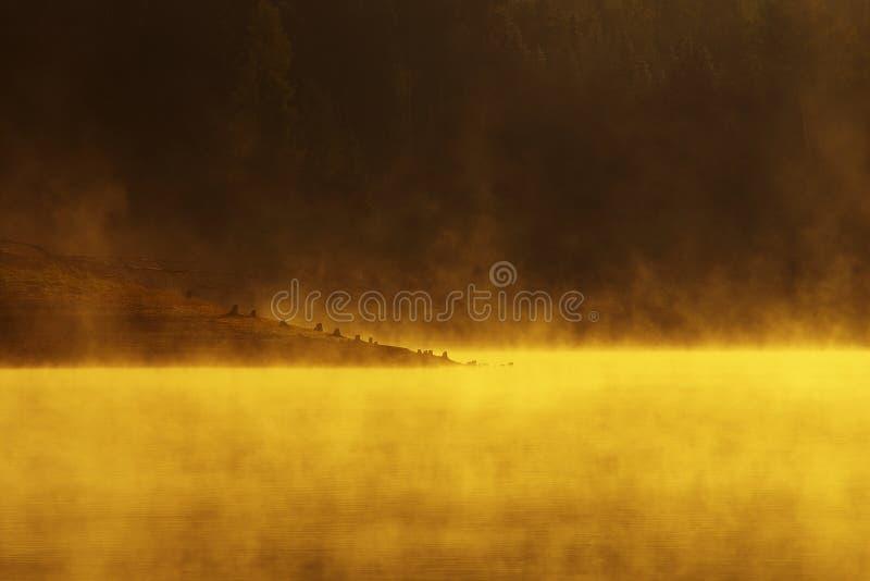 Lago do incêndio imagem de stock royalty free