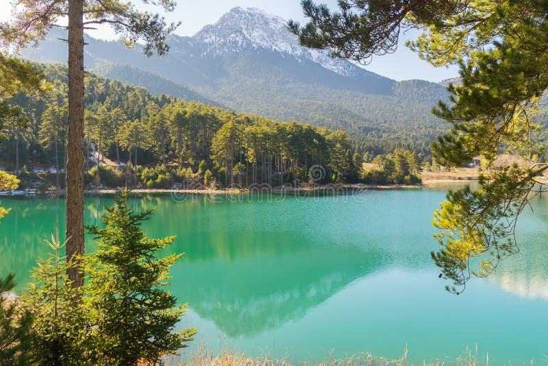 Lago Doxa in Grecia Vista attraverso gli alberi immagine stock