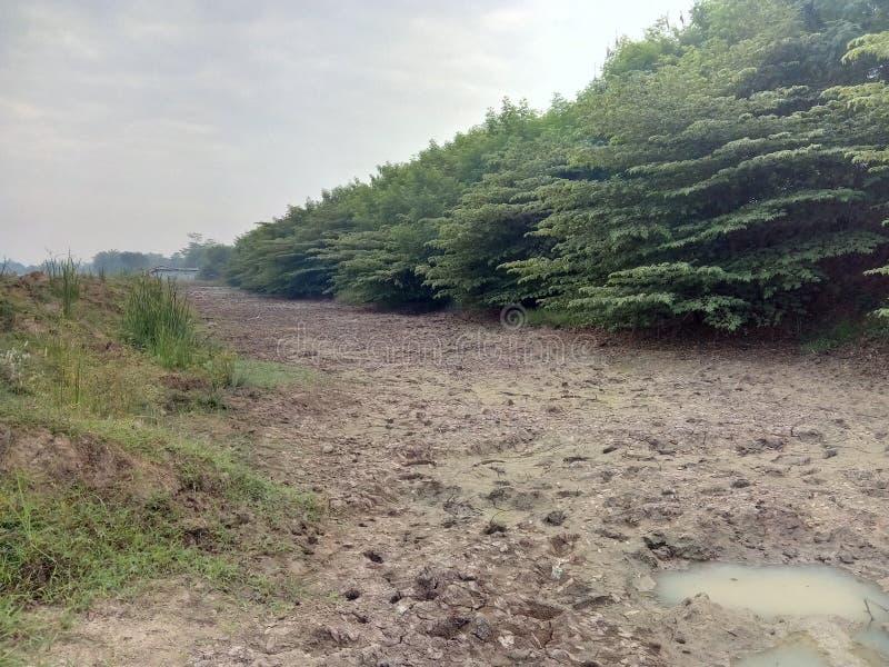Lago Dray nel periodo di siccità fotografie stock libere da diritti