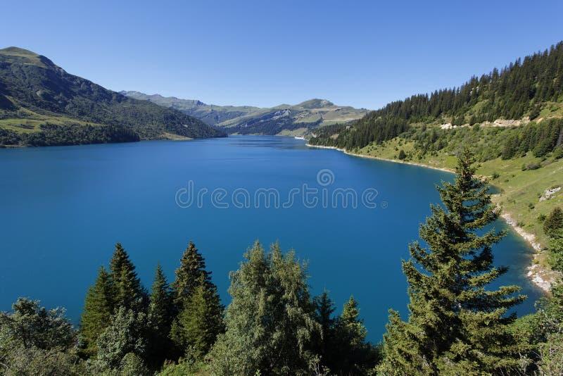 Lago e árvore fotos de stock royalty free