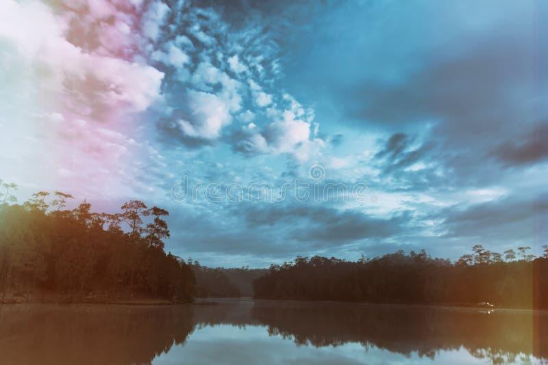 lago e floresta do pinho no tempo de manhã imagem de stock royalty free