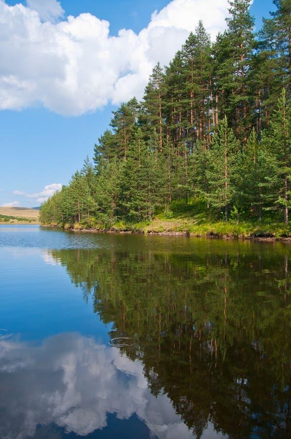 Lago e floresta na montanha de Zlatibor fotografia de stock royalty free