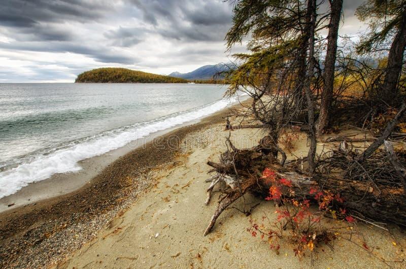Lago e montanhas de Sibéria fotografia de stock royalty free