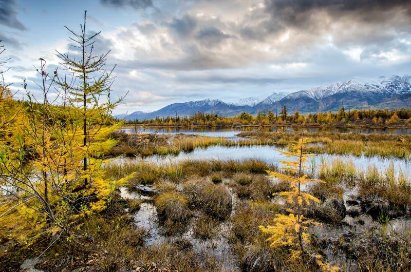 Lago e montanhas de Sibéria imagem de stock