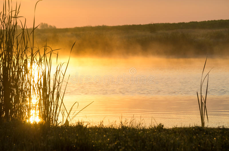 Lago e nebbia fotografia stock libera da diritti