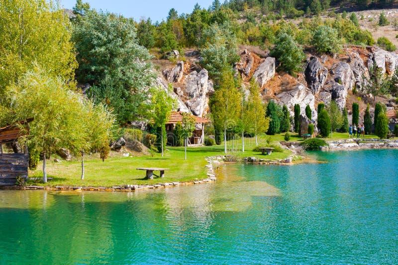 Lago e paesaggio verde degli alberi con le montagne fotografia stock