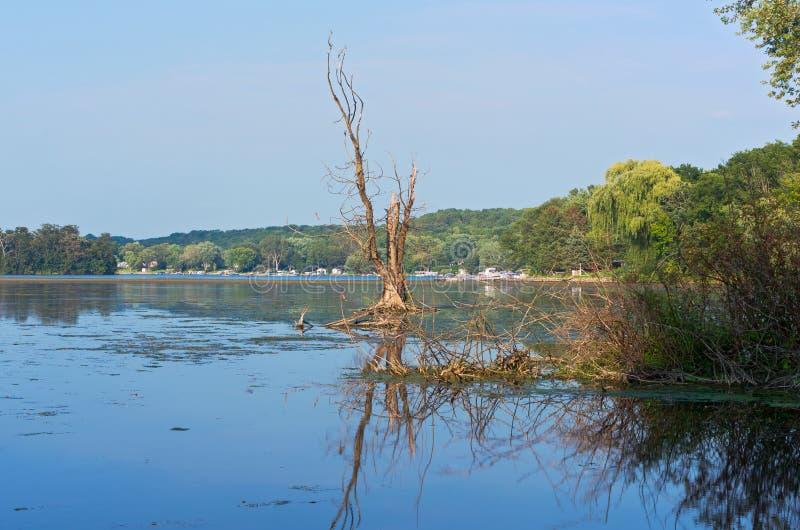 Lago e parque Whitewater cênicos foto de stock royalty free