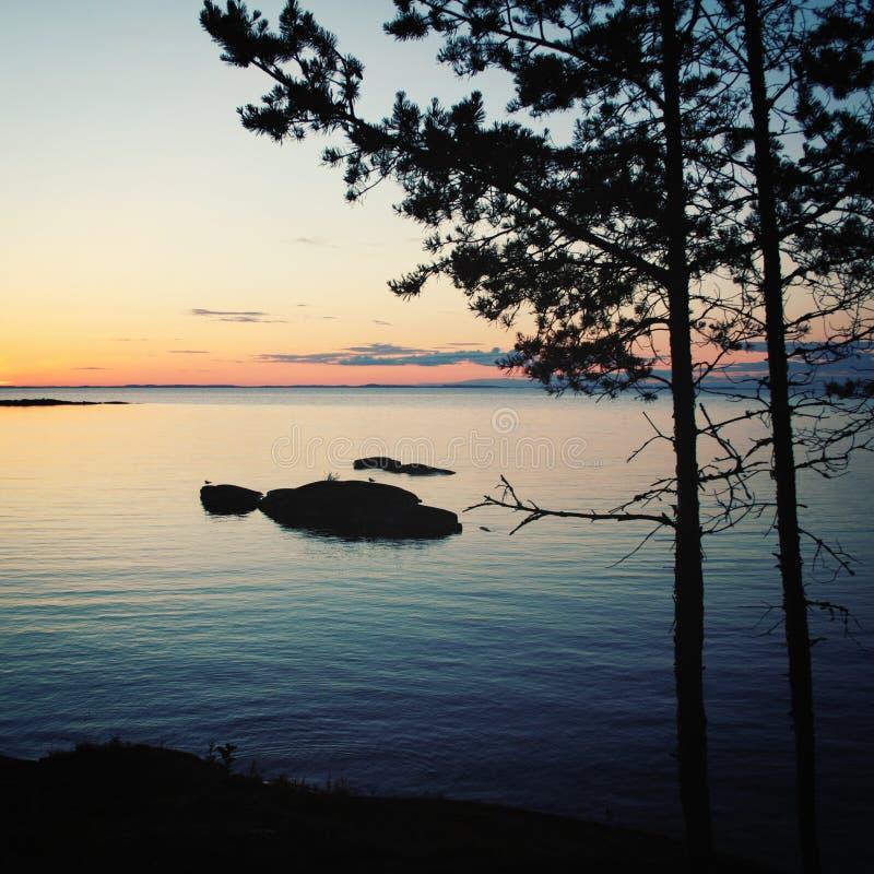 Lago e pinheiros Russo norte Ilha de Valaam, república o fotos de stock royalty free
