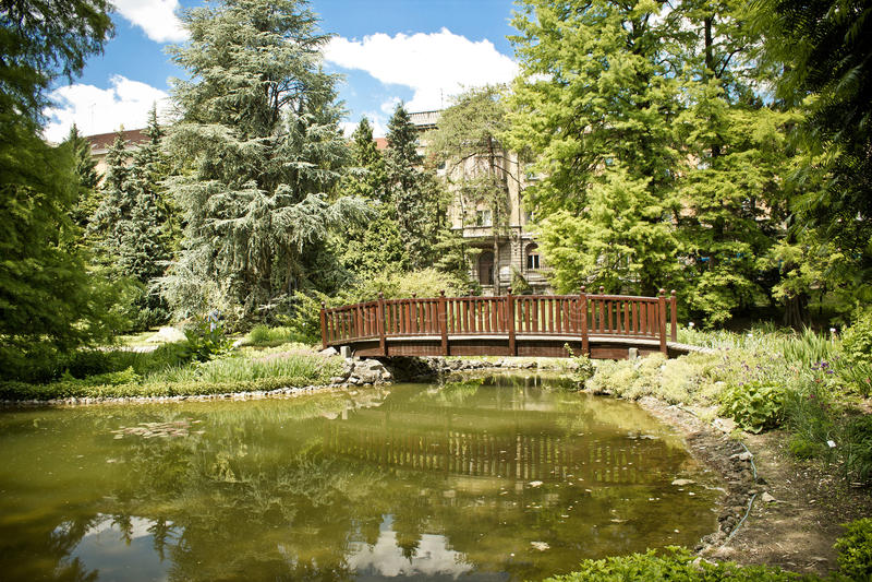 Lago e ponticello del giardino botanico di Zagabria fotografie stock libere da diritti