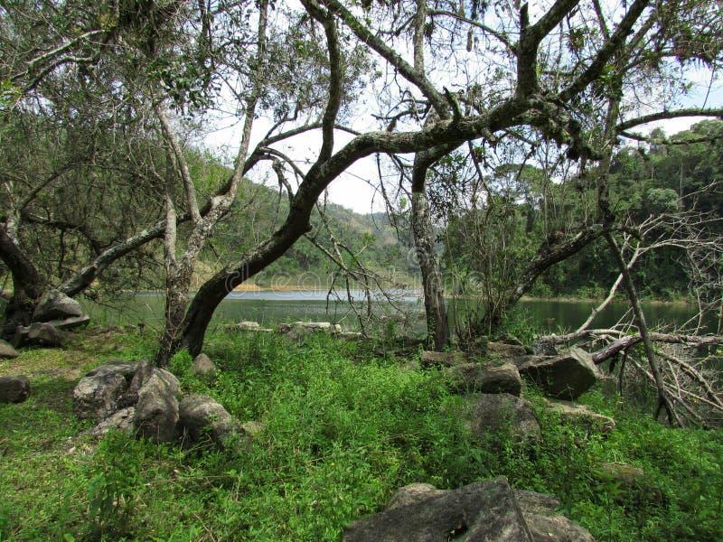 Lago e rovine fotografia stock
