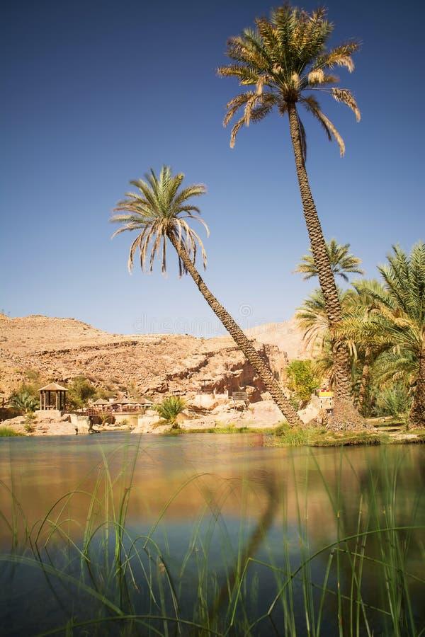 Lago ed oasi con le palme Wadi Bani Khalid nel deserto dell'Oman fotografia stock libera da diritti