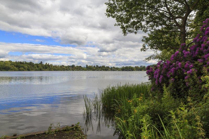Lago ellesmere imagen de archivo