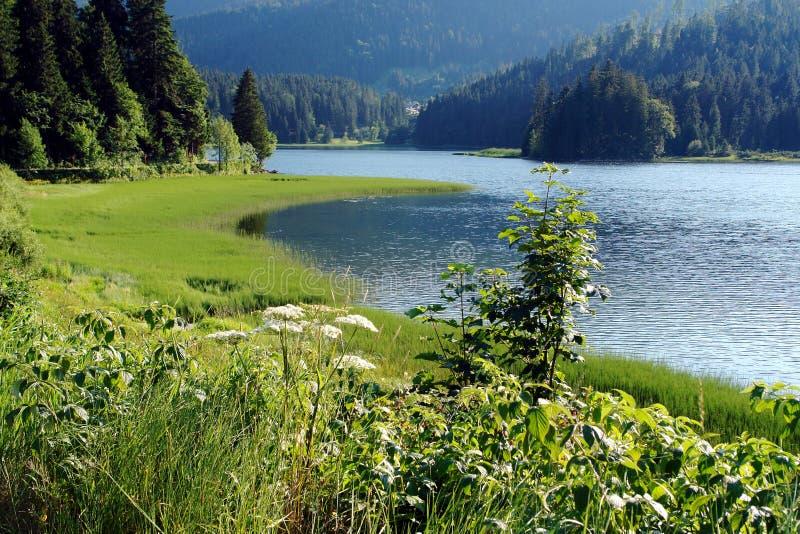 Lago em Alpes (Baviera) imagem de stock