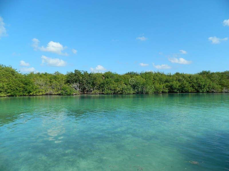 Lago em Cancun foto de stock royalty free