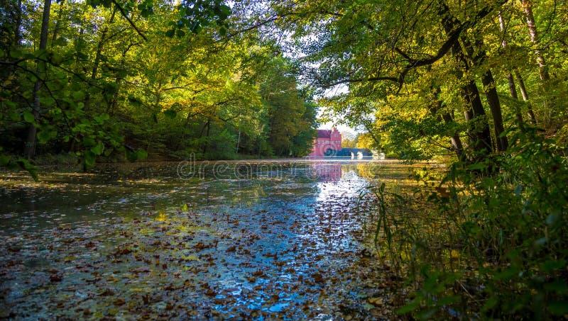 Lago en Cervena Lhota fotos de archivo