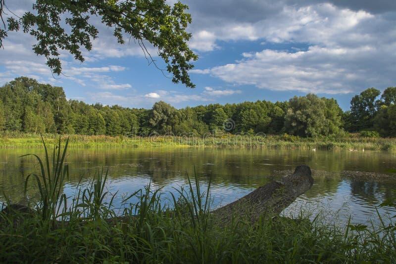 Lago en Chudow imagen de archivo