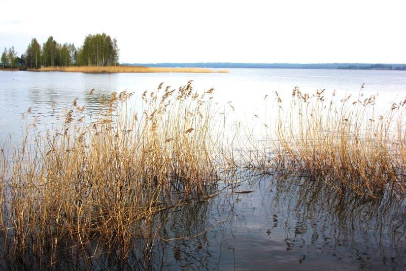 Lago en el día de verano de la puesta del sol Tiempo tranquilo tranquilo Agua lisa fotografía de archivo libre de regalías