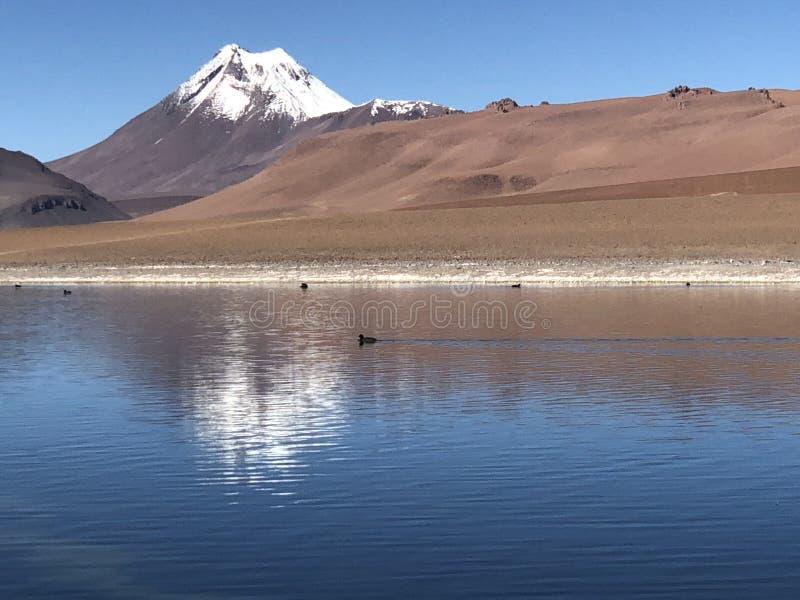 Lago en el ` de San Pedro de Atacama del ` foto de archivo