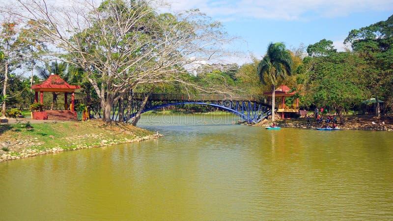 Lago en el parque imagenes de archivo