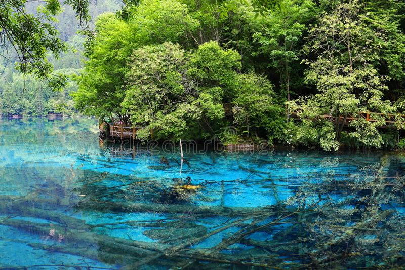 Lago en el parque nacional del jiuzhaigou, Sichuan, China imagenes de archivo