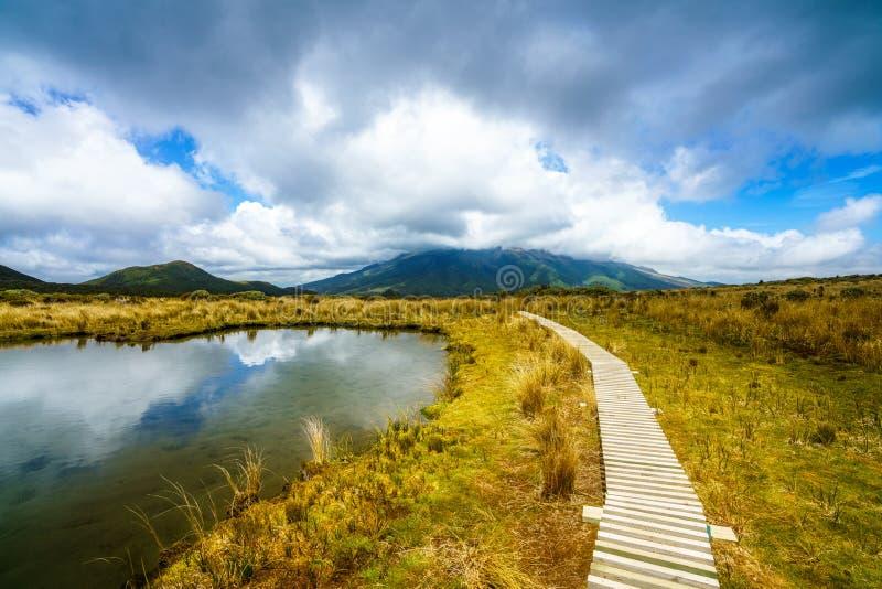 Lago en la pista del mangorei, parque nacional del egmont del soporte, nuevo zealan fotos de archivo