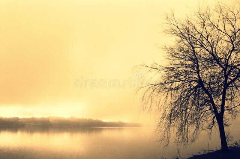 Lago en neblina de la mañana en Søøndersø imagenes de archivo