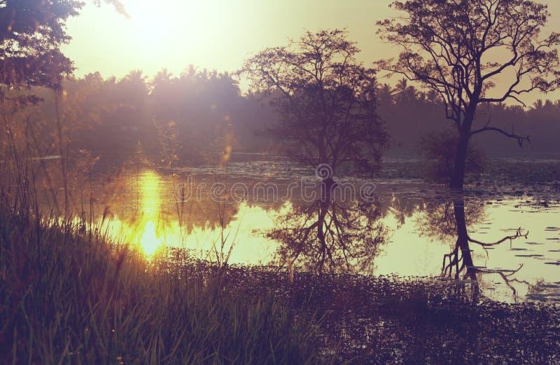 Download Lago en Sri Lanka imagen de archivo. Imagen de serenidad - 64207577