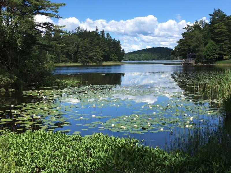 Lago en Suecia imagen de archivo