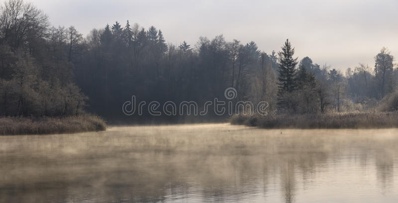Lago enevoado morning do inverno imagens de stock