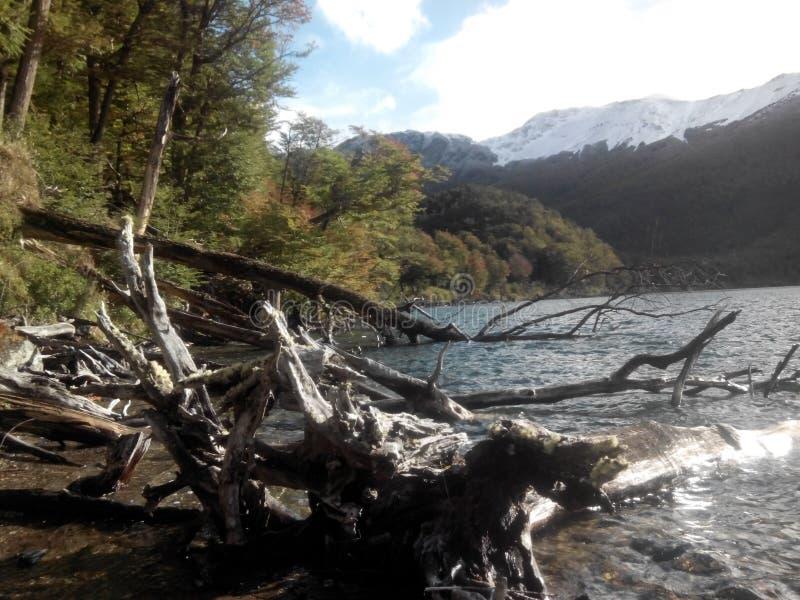 Lago-escondido - Argentinien stockfotos