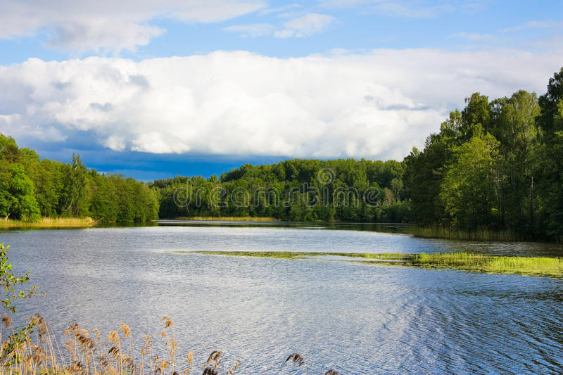 Lago, estate fotografia stock