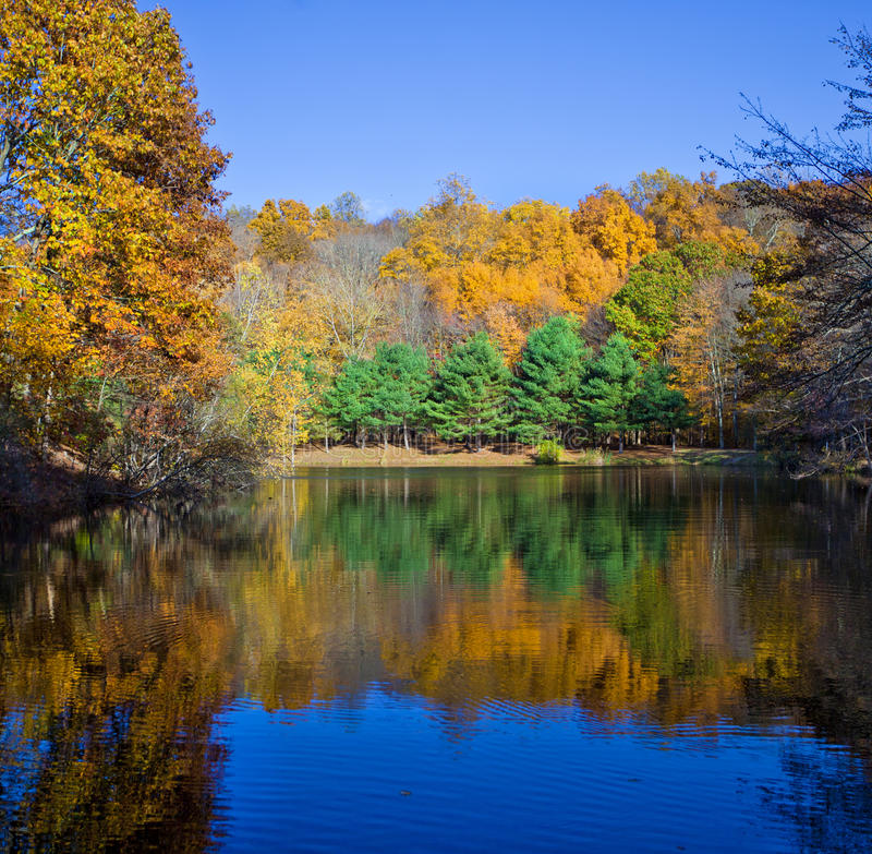 Lago fall foto de stock royalty free