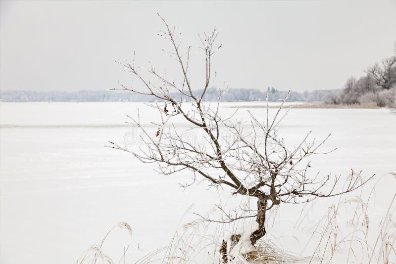 Lago Finja congelado imagenes de archivo