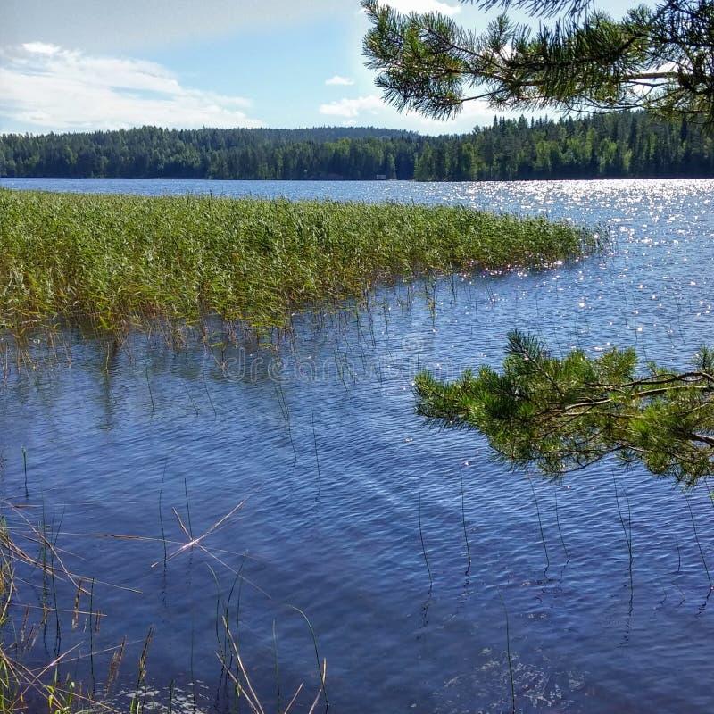 Lago Finlande Saimaa immagine stock libera da diritti