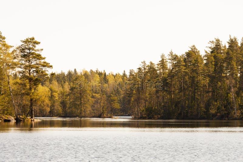 Lago finlandese immagini stock