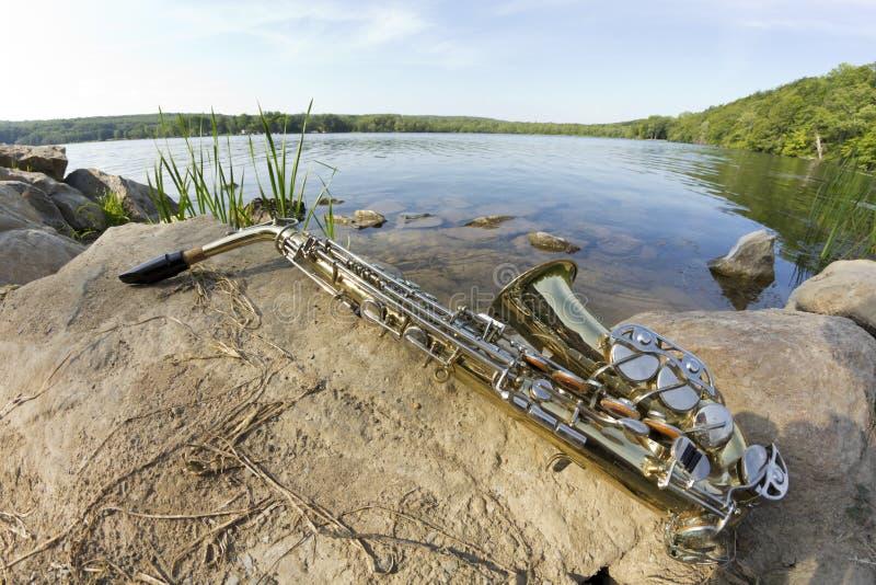 Lago Fisheye saxophone imagen de archivo