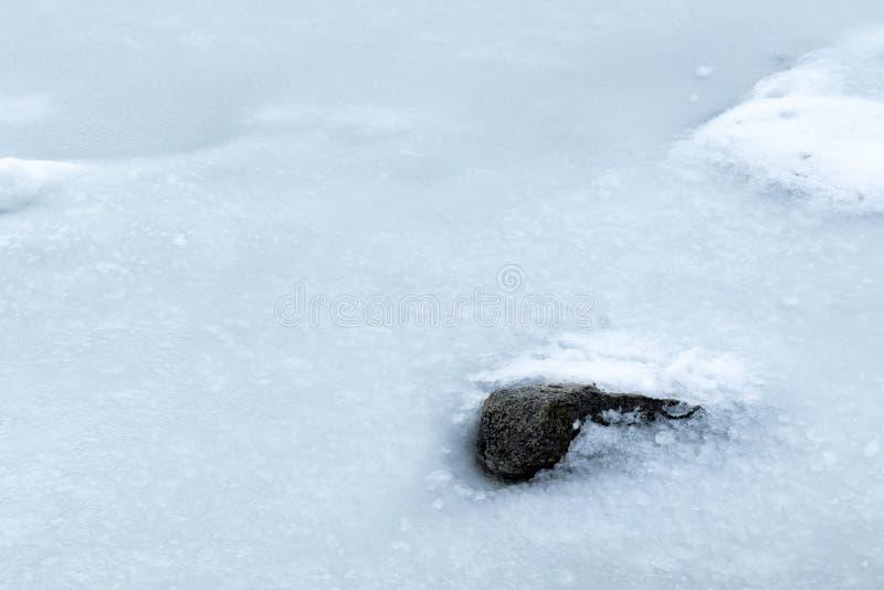 Lago Flozen, alterações climáticas LAK em Califórnia do sul, Big Bear imagem de stock