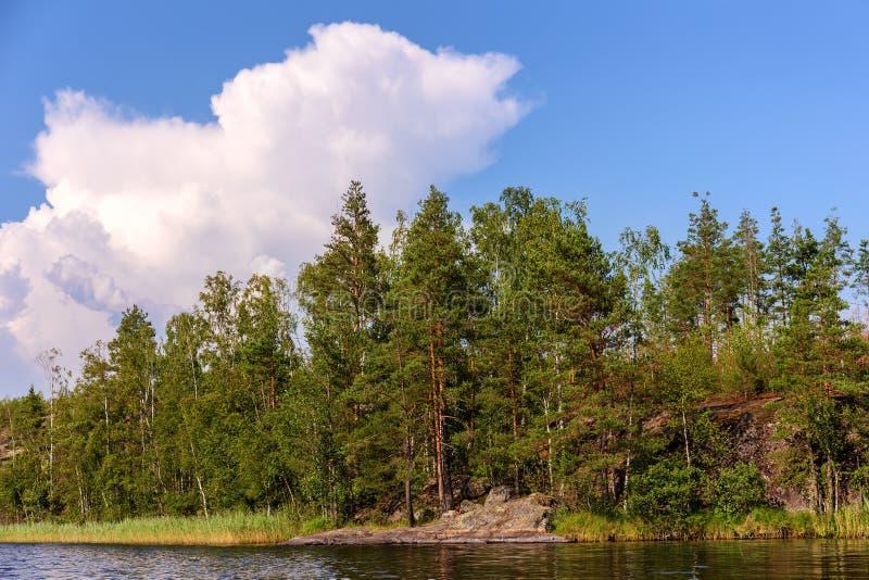 Lago forest con las rocas fotos de archivo libres de regalías