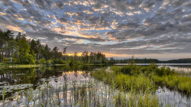 Lago forest de Nordvattnet en reserva de naturaleza de Hokensas foto de archivo libre de regalías