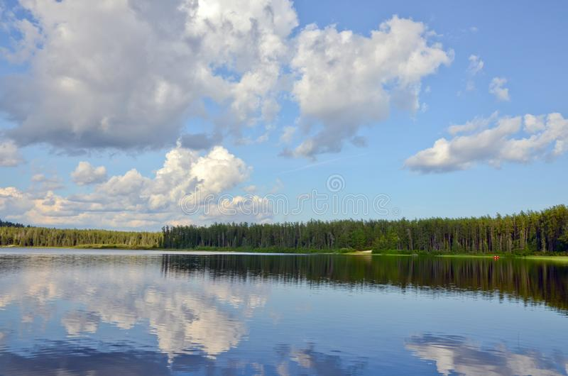 Lago forest en día soleado del otoño imagenes de archivo